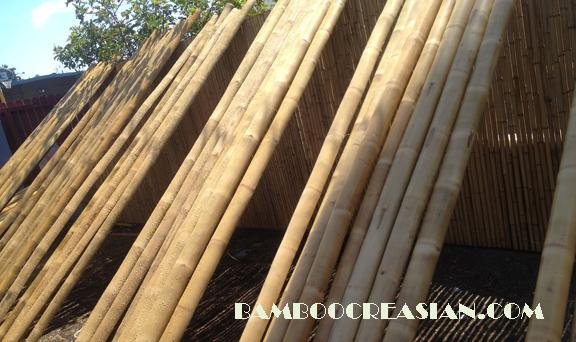 Large Bamboo Poles ~ Bamboo poles sticks bamboocreasian