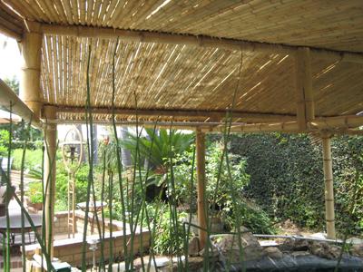 Bamboo Poles Construction