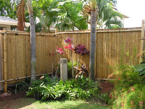 BAMBOO ROLL FENCES