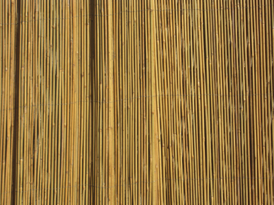 Bamboo Barbamboo Fences Bahia Honda State Park And Beach Big Pine Key,  Florida Bamboo Fences California Bamboo Fences Orange Couny, Bamboo Fences  Los ...